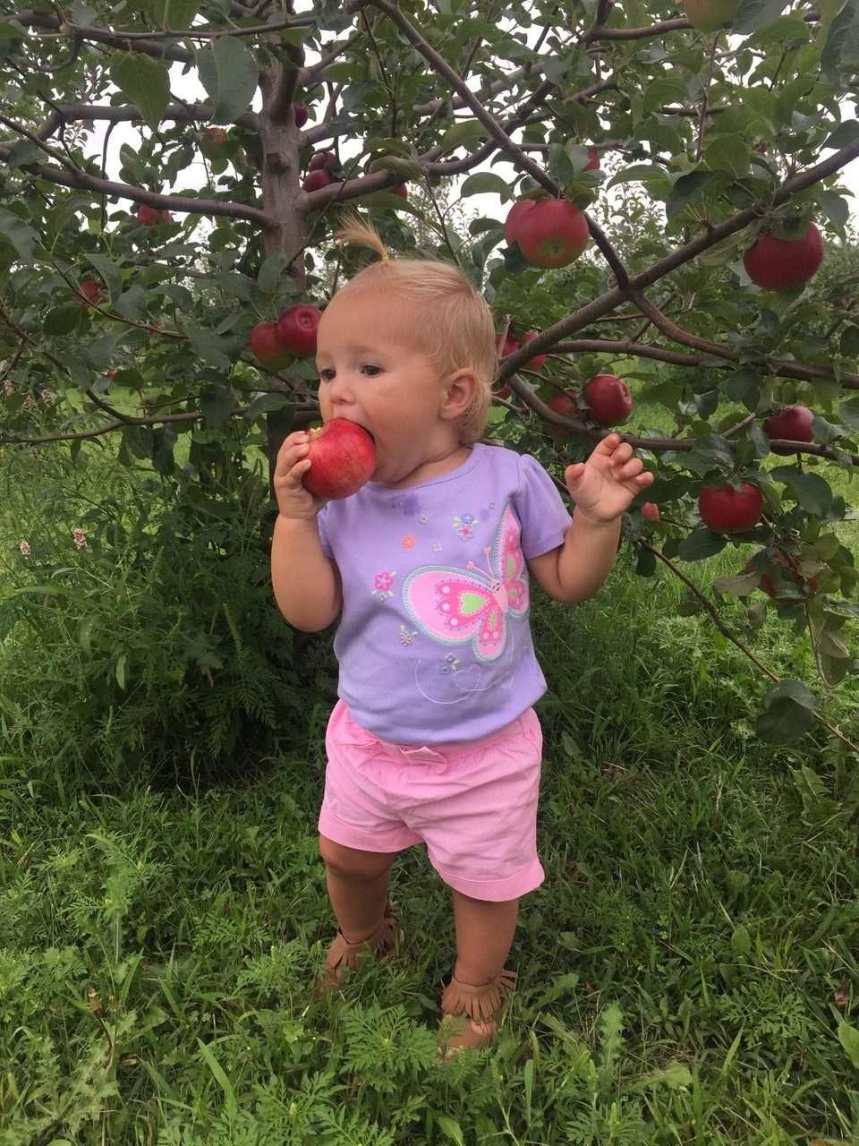 Young Apple Fan